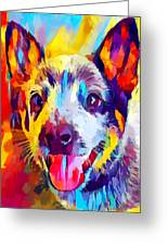 Australian Cattle Dog 3 Greeting Card