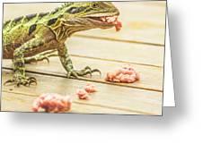 Australian Water Dragon Greeting Card
