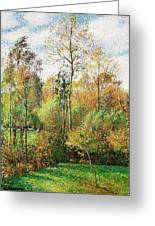 Automne, Peupliers, Eragny - Digital Remastered Edition Greeting Card