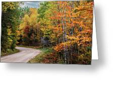 Autumn Buck  Greeting Card by Patti Deters