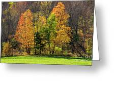 Autumn Colour In Southern Ontario Greeting Card