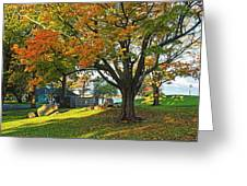 Autumn Day In The Salem Willows Salem Ma Red Greeting Card