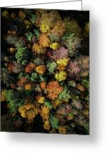 Autumn Forest - Aerial Photography Greeting Card