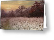 Autumn Frost Greeting Card