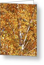 Autumn Golden Leaves Greeting Card