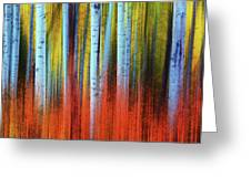 Autumn In Color Greeting Card by John De Bord