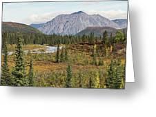 Autumn In Denali Greeting Card