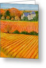 Autumn In French Vineyards Greeting Card