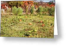 Autumn In The Pumpkin Patch Greeting Card by Alison Frank