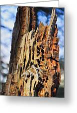 Autumn Knotty Tree Sculpture Greeting Card