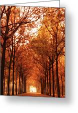 Autumn Lights At Groeneveld Greeting Card