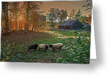 Autumn Sunset At The Old Farm Greeting Card by Wayne Marshall Chase