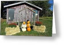 Autumn Wedding In The Pumpkin Patch Greeting Card