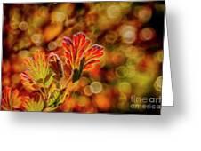 Autumn's Glow 2 Greeting Card
