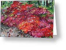 Azaleas National Arboretum 201836 Greeting Card