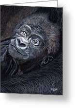 Baby Gorilla Greeting Card