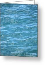 Bahamas Blue Greeting Card