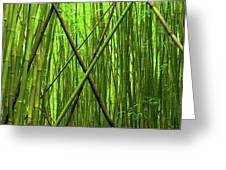 Bamboo X Greeting Card