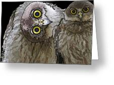 Barking Owls 2 Greeting Card