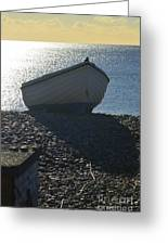 Beached Greeting Card