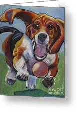 Beagle Chasing Ball Greeting Card