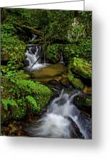 Beautiful Cascades Of Lee Falls Greeting Card