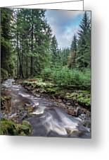 Beautiful Ethereal Style Landscape Image Of Small Brook Flwoing  Greeting Card