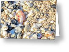 Beauty At The Beach Greeting Card
