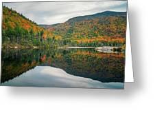 Beaver Pond Greeting Card by James Billings