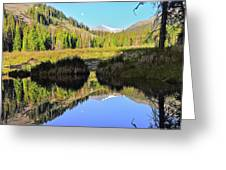 Beaver Pond Reflection Greeting Card