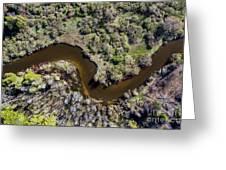 Betsie River Curve Greeting Card