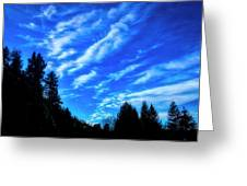 Big Sky And Trees Greeting Card