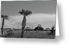 Biloxi Schooner Pier In Black And White Greeting Card