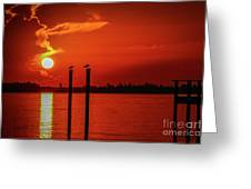 Bird On A Pole Sunrise Greeting Card