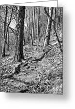 Black And White Mountain Trail Greeting Card