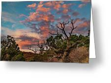 Black Canyon Sunrise Greeting Card
