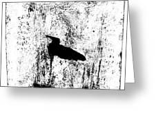 Black Ivory Actual 1b23z Greeting Card