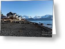 Black Sand Beach In Seward Alaska Greeting Card