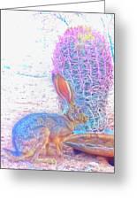 Black-tailed Jackrabbit Greeting Card