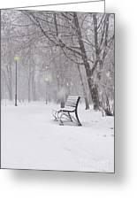 Blizzard In The Park Greeting Card
