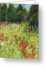 Blooming Field Greeting Card