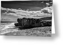 Blowing Rock Preserve 1 Greeting Card