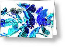 Blue Buggery  Greeting Card