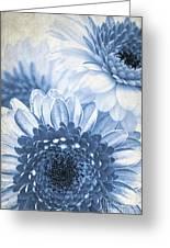 Blue Gerbera Greeting Card