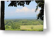 Blue Ridge Mountains And Vineyards Greeting Card