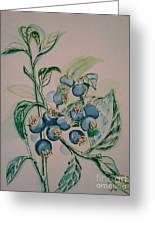 Blueberries At Lake Pickerel Greeting Card