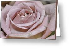 Blushing Greeting Card by JAMART Photography