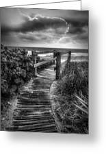 Boardwalk To The Sea In Radiant Black And White Greeting Card