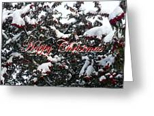 Happy Christmas 12 Greeting Card