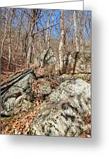 Boulders Along The Trail Greeting Card